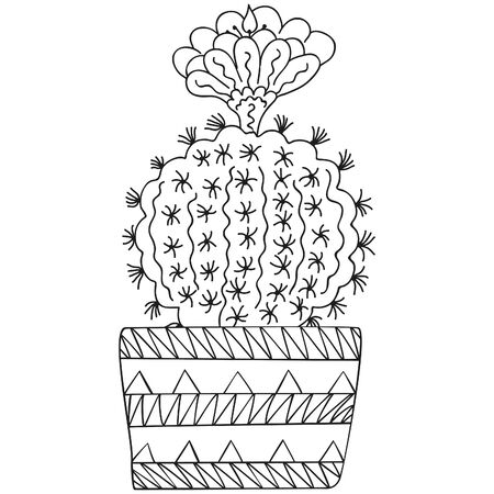 Black and white stylized flowering Parodia cactus with thorns and flower in a patterned pot. Vector. 일러스트