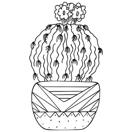 Black and white Notocactus leninghausii with small blossoming flowers on top growing in a pot. Cactus in a pot. Indoor succulent plant. Vector. 일러스트