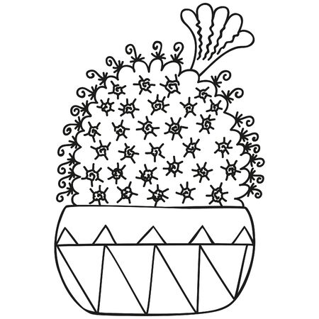 Black and white Mammillaria bocasana with flower from above growing in a pot. Cactus for coloring book, graphic design. Single succulent. Vector. 일러스트