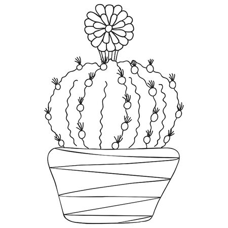 Stylized black and white Astrophytum ornatum cactus with a blossoming flower in a pot. Isolated doodle. Indoor succulent. Vector. 일러스트
