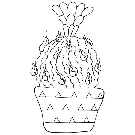Black and white isolated Astrophytum with long spines and flower. Monochrome cactus in a pot. Scandinavian style. Vector. 일러스트