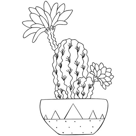 Black and white stylized flowering Echinopsis with spines and flowers. Home tropical parting in a patterned pot. Scandinavian style. Template for  coloring book and print. Vector.