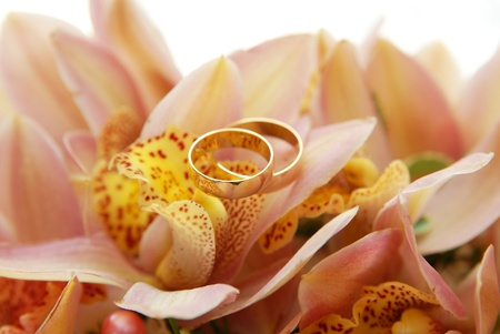 Two wedding rings on the flower photo