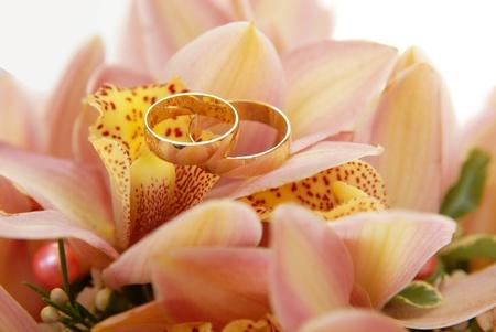 church flower: Due anelli di nozze sul fiore Archivio Fotografico