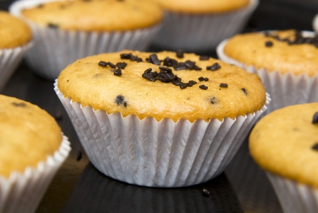 Freshly baked muffins in cups topped with chocolate . photo