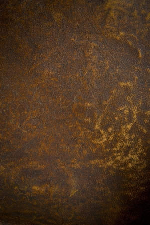 rough leather: Vintage brown  leather texture closeup .