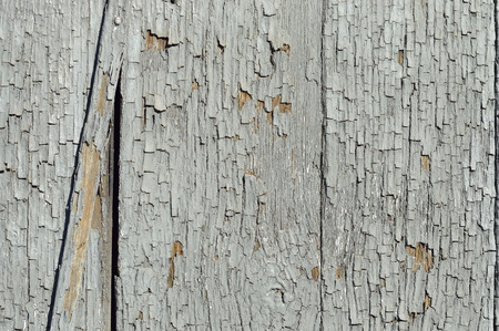 ashy: Old wall of wooden planks with paint cracked . Stock Photo