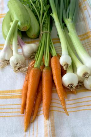 Zucchini, carrots bond, garlic and onion on a textile cloth Stock Photo