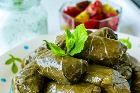 hojas parra: Tradicional b�lgara vid rellenas casera deja con arroz y adornado con los tomates frescos, lim�n y salsa de yogur y eneldo