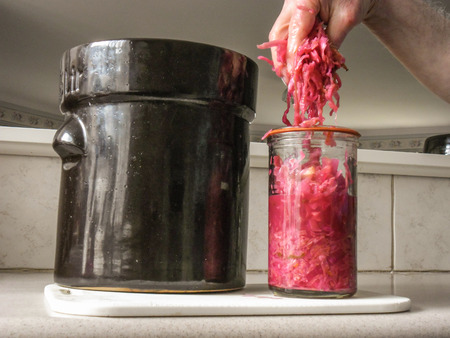 billions: Sauerkraut made from red and white cabbages teems with billions of probiotics, not just the millions you get in capsules. Stock Photo