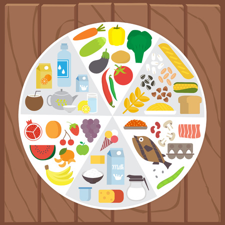 portions: Healthy food. Infographic lifestyle concept with plate shared on portion. Flat vector illustration