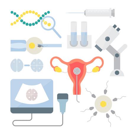 ovario: En conjunto la fertilizaci�n in vitro. Procedimiento in vitro, fecundaci�n en el laboratorio. La inseminaci�n artificial y la infertilidad femenina. Iconos del vector del aparato reproductor