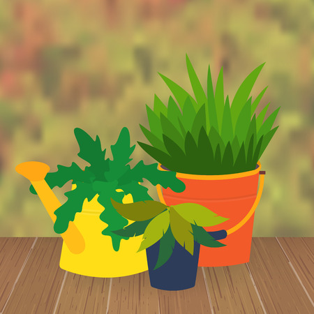 flower bed: Flower bed and garden flower pots. Garden pots decoration. Original garden flower pots from bucket and watering can. Vector  illustration Illustration