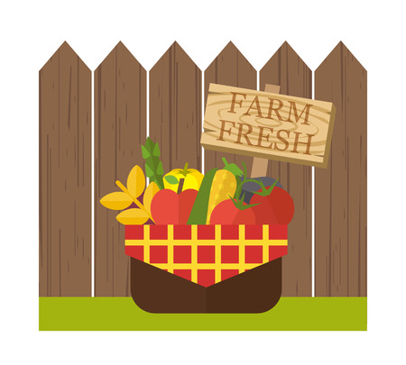 fresh vegetable: Organic food basket. Basket with fresh organic food near wooden fence. Organic vegetable basket with harvest. Food vector illustration Illustration