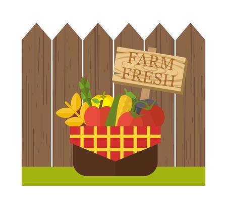 fruit and veg: Organic food basket. Basket with fresh organic food near wooden fence. Organic vegetable basket with harvest. Food vector illustration Illustration