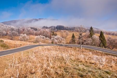 Estrada sinuosa em Bieszczady Mountain, na Polônia. Árvores cobertas pela geada.