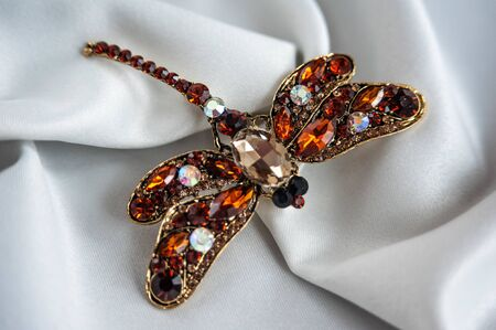 a beautiful brooch is on the fabric