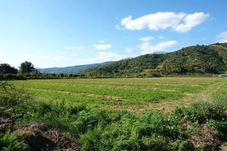 rupestrian: Farm landscape, small valley in the city of Santiago, chili                                  Stock Photo