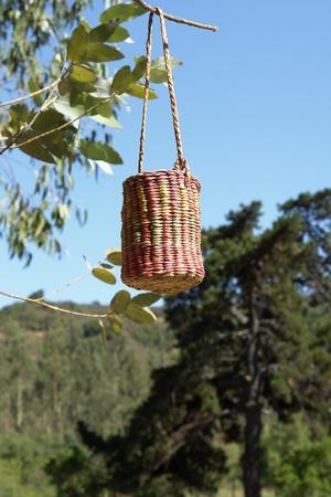craftsmanship: Craft large basket made of colors straw of rush. Chilean craftsmanship