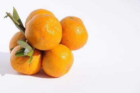Tangerines Stock Photo - 10690756