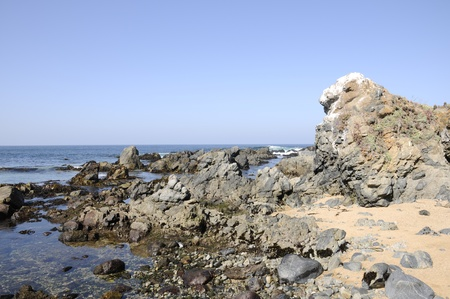 arises: Landscape of sea, sky, big rocks, and algae