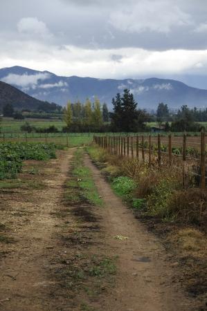 Día de campo rural, paisaje de invierno soleado Santiago de Chile Foto de archivo - 13923704