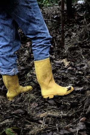 Yellow boots Stock Photo - 13923688