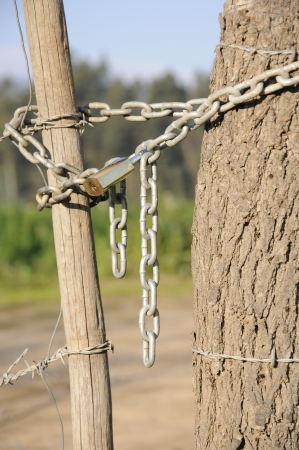 Chain and barbed wire
