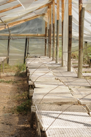Wooden greenhouse Stock Photo
