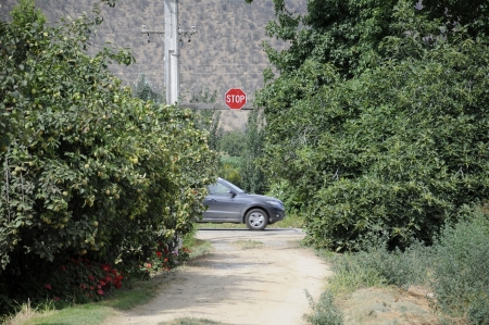 Stop sign, rural