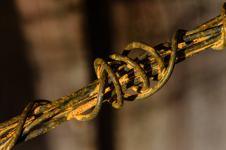 wire fence: Rust on a wire macro