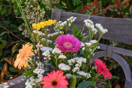 Flores em um banco de teca no quintal Foto de archivo - 75724649