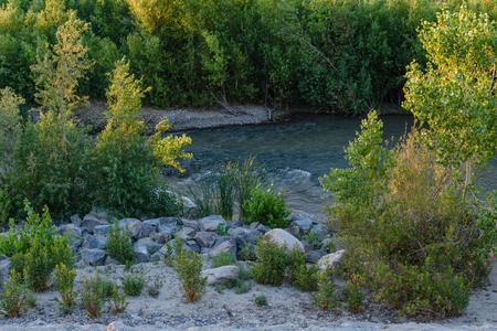 春の雨は、川の水の流れを高める