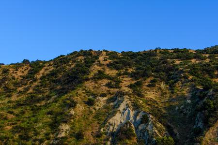 低木は、岩が多い山腹をカバーします。