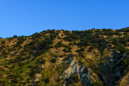 Shrubs cover the rocky hillside Stockfoto