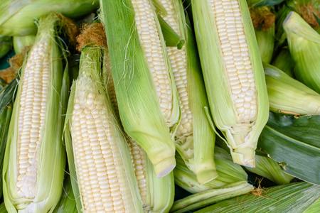 Witte maïs voor BBQ Stockfoto - 79130686