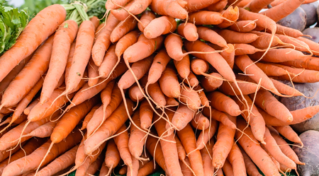 Bunches of carrots for sale