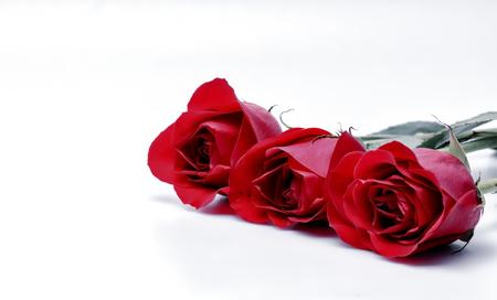 行の 3 つの赤いバラ