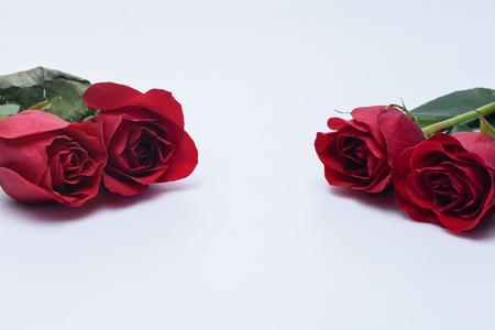 それぞれの側に 2 つの赤いバラ