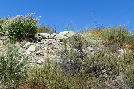 シャパラルと砂漠の山々 の岩