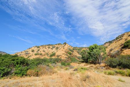 夏の終わりの丘南西を乾燥します。 写真素材