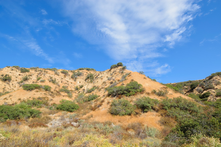 夏の終わりのカリフォルニア丘の中腹をハイキング