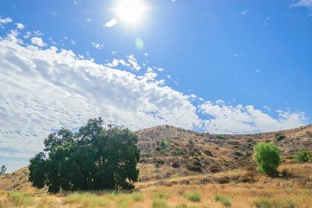 乾燥の丘に昇る 写真素材