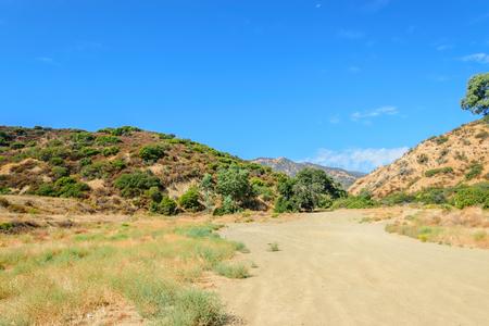 未舗装の道路、南カリフォルニアの森林面積