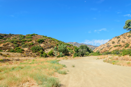 Dirt road in Southern California forest area Stockfoto