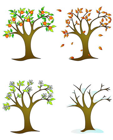 colorfull: Four seasons � colorfull trees Illustration