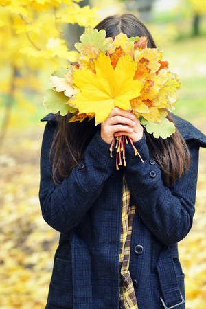Girl hides her face behind yellow autumn leaves, bouquet, autumn Stock Photo