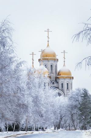 冬の雪に覆われた公園の教会のドーム