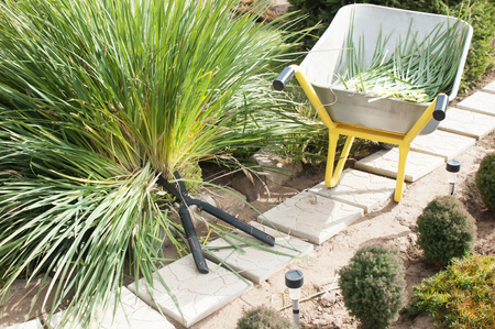 Preparing the garden for winter, pruning plants in the fall, pruners, garden trolleys in the garden Stock Photo