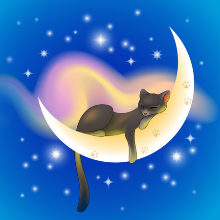 Black cat sleeping peacefully on a crescent moon shining on a blue starry sky with pink cloud 일러스트